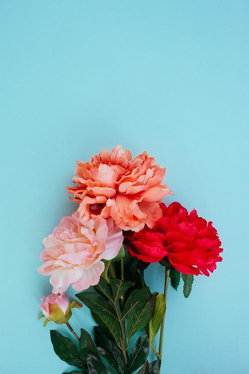 flowerblues