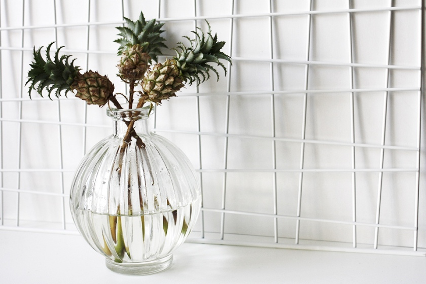noa-noir-art-home-decor-inspiration-interior-plants-baby-pineapples-miniature-1